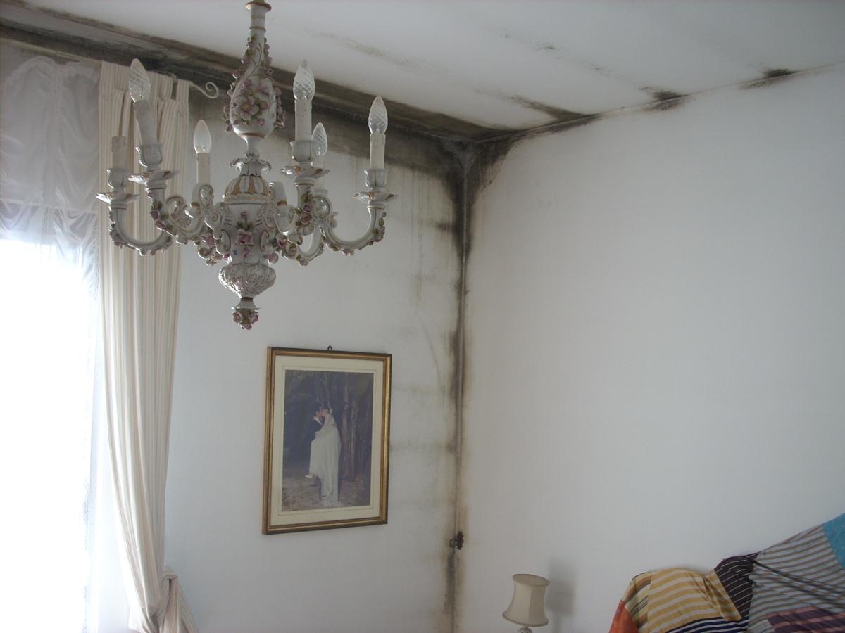 Problemi di muffa e condensa in casa emu architetti - Muffa e umidita in casa ...
