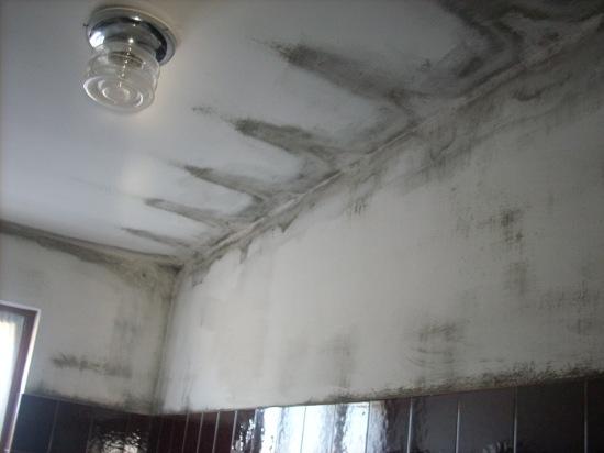 Problemi di muffa e condensa in casa emu architetti - Eliminare condensa in casa ...