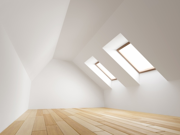 PlatinumRoofingSkylight.jpg